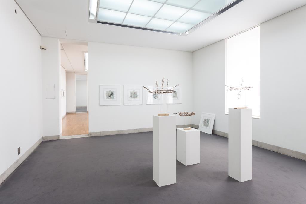Ausstellungsansicht Felix Sommer: Entwurzelt (2019); Foto: Benjamin Knoblauch